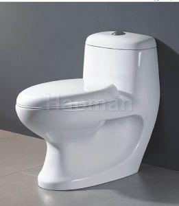 Toilet (HM-2009)