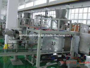 End of Line Packaging Machine (VFFS-YH008) pictures & photos