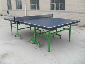 Folded Table Tennis Table (TE-201) pictures & photos
