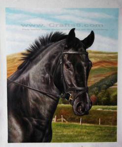 Animal Oil Painting - Horse Painting