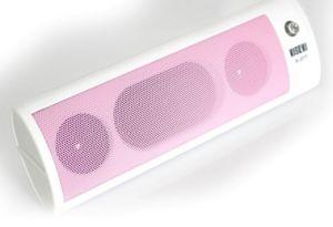 Portable Speaker Built-in: SD Card, USB Decoder (P4003)
