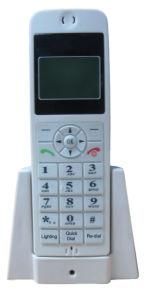 GSM Fixed Wireless Telephone (2813E)