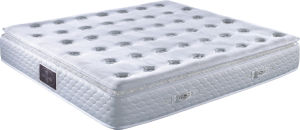 Bonnel Spring Mattress (MA11) pictures & photos