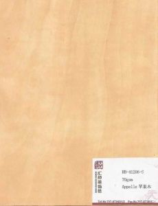 Apple Decorative Paper (HB-41206-6)