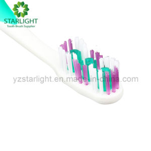 360 Good Selling Adult Toothbrush pictures & photos