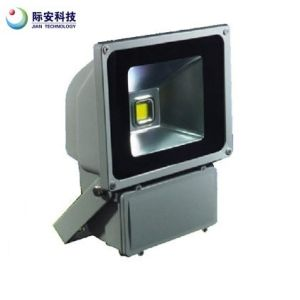 80W 220V Green LED Floodlight for Yard Garden pictures & photos