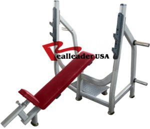 Exercise Equipment/ Home Gym /Incline/Flat Bench (FW-1002) pictures & photos
