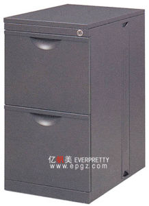 2 Drawer Steel Filing Cabinet (DG-23) pictures & photos