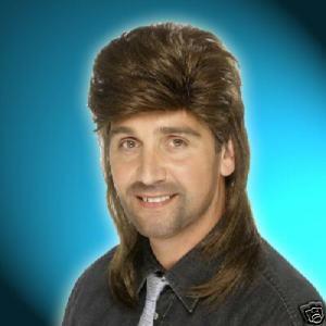 Men′s Wig (RW9409)