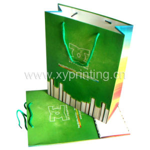 Eco-Friendly Gift Bag Printing (XY-0289)