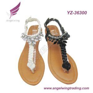 Fashion Sandals (YZ-36300)