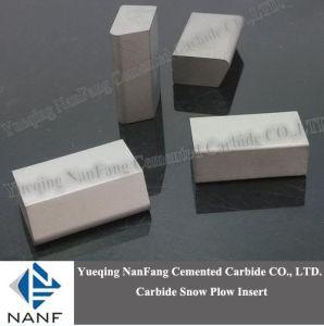 Tungsten Carbide Snowplow Tips