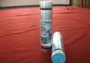 Outdoor Mat, EVA Foam Mat, Yoga Mat, EVA Mat with Aluminium Foil pictures & photos