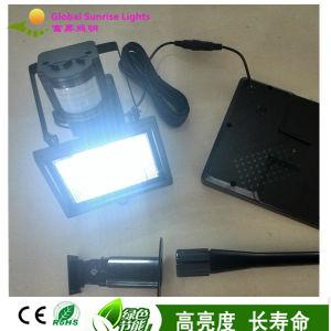 2W Solar Sensor Lights with PIR Sensor/Solar Flood Lights pictures & photos