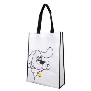 Non-Woven Shopping Packing Bag