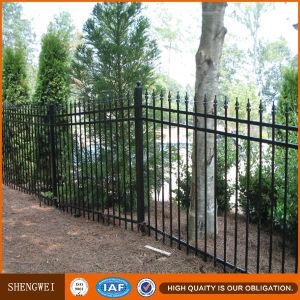 Elegant Iron Fence/Steel Yard Fence Design pictures & photos