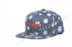 Promotional Sports Snapback Cap for Sale pictures & photos