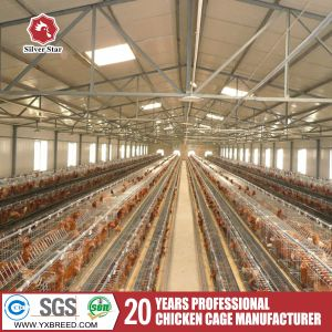 New Type Ladder Type Egg Chicken Cage pictures & photos