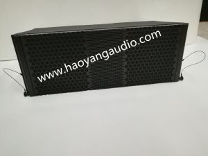 Ds208 Two-Way Line Array Mobile Project Indoor or Outdoor Speaker pictures & photos