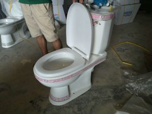 Newest Middle East Design Decorated Ceramic Big Hole Toilet Seat pictures & photos