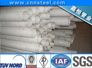 Stainless Steel Tube (  ASTM A213 A312 A268 A269  A789  A790) pictures & photos
