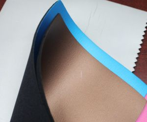 Coated Smooth Skin Cr Neoprene (STN-041) pictures & photos
