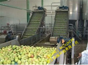 Fruit Bubble Washing Machine pictures & photos