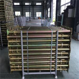 Scaffolding Post Shore Used for Construction Sites pictures & photos