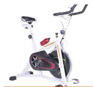 High Quality Ion Fitness Magnetic Spin Bike for Fitness Equipment (5002) pictures & photos