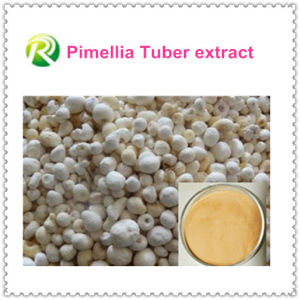 Hot Sale 100% Natual Pimellia Tuber Extract pictures & photos