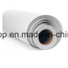 PVC Self Adhesive Vinyl Sticker Printing Materials (90mic 120g relase paper) pictures & photos