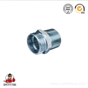 Metric Bsp NPT Jic Male Female Tube Hydraulic Fitting Adapter 1bt-Sp pictures & photos