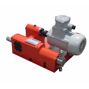 Plunger Type Metering Pump 1zjt1.54/12 pictures & photos