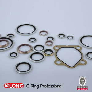 FKM Bsp Size Bonded Seal for Dynamic Seal pictures & photos