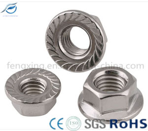 Stainless Steel 201 304 316 Hex Flange Nut pictures & photos