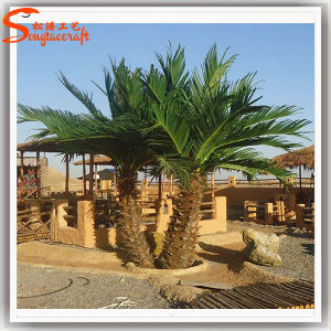 Latest Style Outdoor Mini Artificial Washington Palm Tree pictures & photos