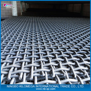 72b Vibrating Mesh Used in Cusher Plant pictures & photos