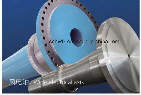 Hot Forged 0Cr18Ni9 (AISI304) Shaft pictures & photos