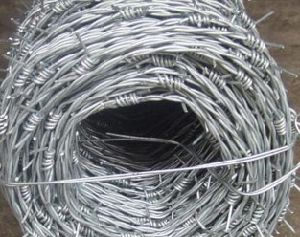 Hot-DIP Galvanized Barbed Wire Factory Price pictures & photos