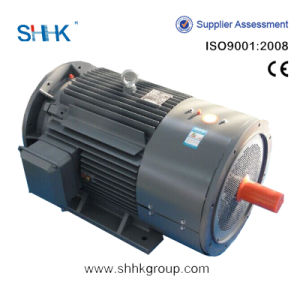Three Phase AC Dual Shaft Electric Motor pictures & photos