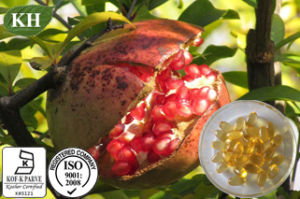 Punicic Acid 75% Pomegranate Seed Oil pictures & photos