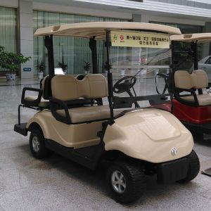 High Quality 2+2 Seats Electric Vehicle Made by Dongfeng pictures & photos