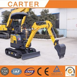 CT16-9d (with canopy) Hydraulic Crawler Multifunction Mini Digger pictures & photos