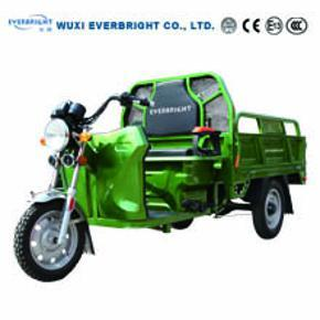 Popular 48V 1000W Electric Cargo Tricycle