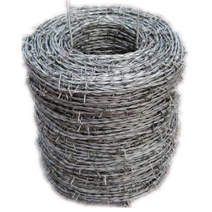 China Manufacturer Galvanized 12X12 Barbed Wire (BW) pictures & photos
