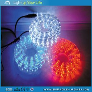 LED Decorative Neon Light for Everyday Life pictures & photos
