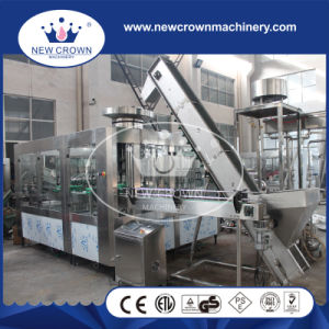 Rotary Type Aseptic Glass Bottled Juice Filling Machine in Stainless Steel pictures & photos