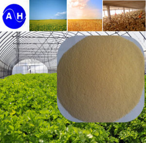 Hot Sale Pure Vegetable Source Amino Acid Free From Cholodrion High Free Amino Acid pictures & photos