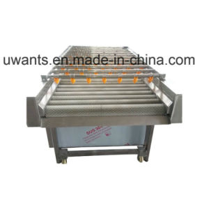 Vegetable and Fruit Washing Machine for Sale pictures & photos