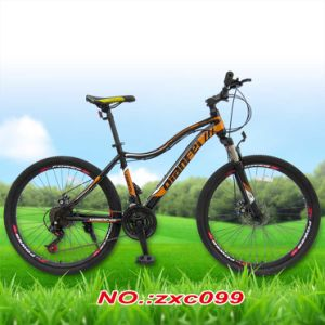 "26"" Mountain Bike/Road Bicycle/City Cycle pictures & photos"